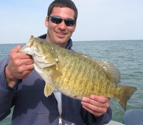 6lb 2 oz smallmouth bass steve 5 32009 lake st clair for Lake wallenpaupack fishing report