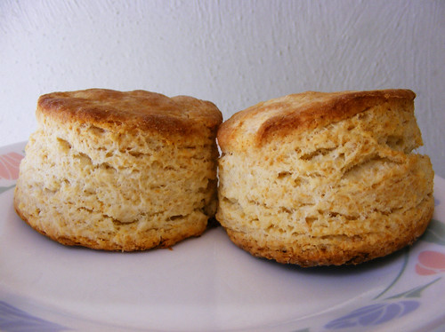 America S Test Kitchen Biscuit Recipe