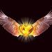 eagleheart_1280