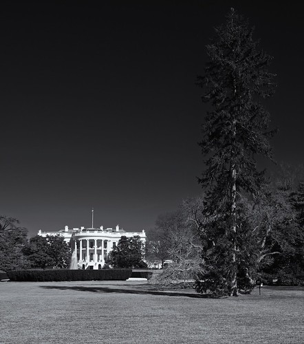 The White House | by MeckiMac