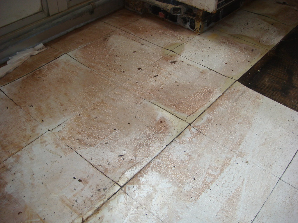 moisture damaged asbestos floor tile example of 12 x 12