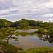Lake View In Kiyosumi Gardens