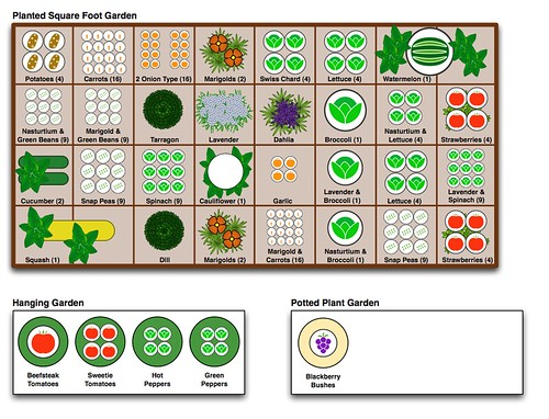 Mcintyre Square Foot Garden Plan