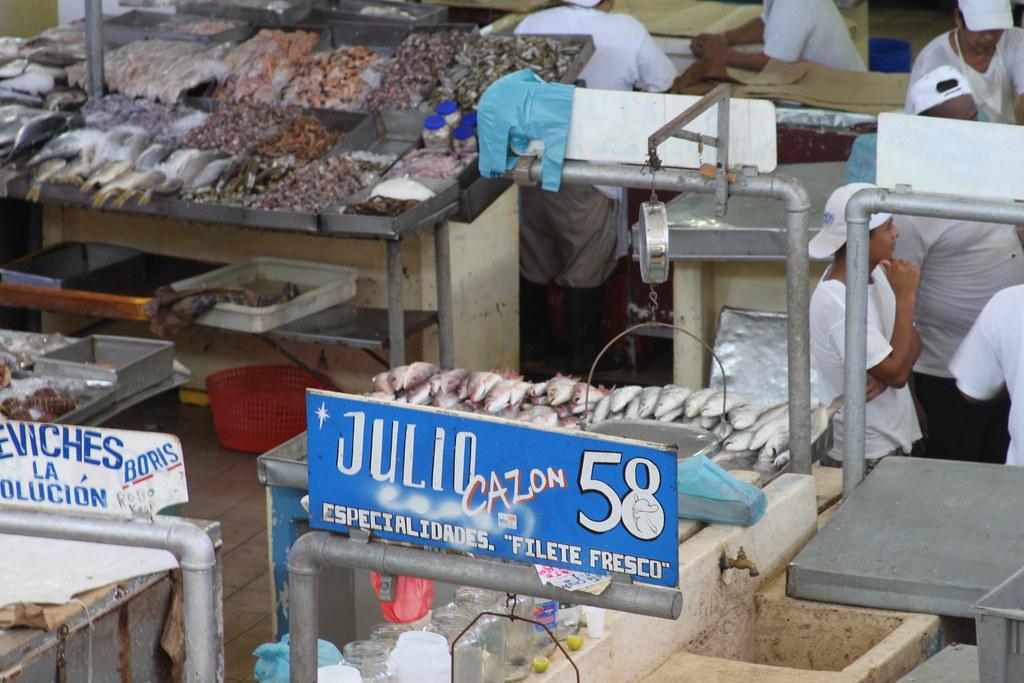 Panama panama city fish market fish market panama for City fish market