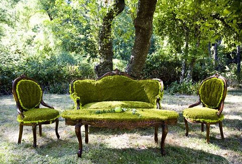 Decor Moss Covered Furniture Giac1061 Flickr