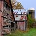 callaway barn2