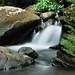Cascada en el Yunque III