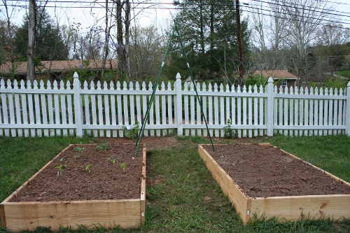How to prepare Soil for a Vegetable Garden | ecogreenlove
