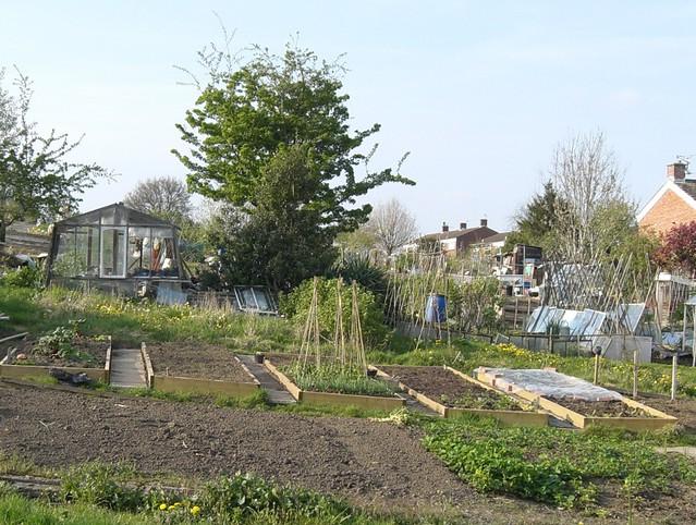 Landscape Gardener Jobs Cardiff u2013 izvipi.com
