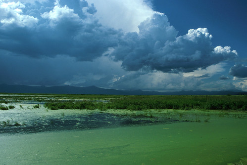 Klamath Basin landscape | by USFWS Pacific Southwest Region