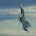 Canadian CF 18 Hornet