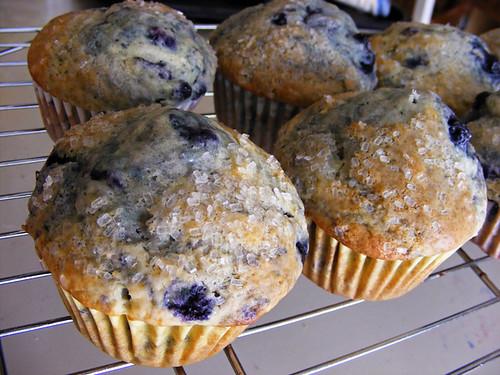 America S Test Kitchen Muffin Recipe