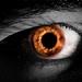 71/365: Eye of Fire