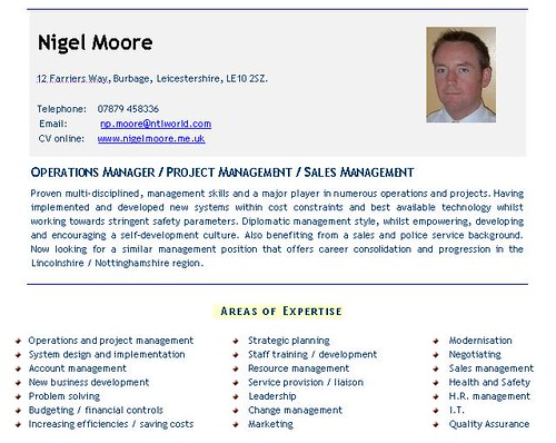 CV Template Example1 | View this CV example to help you find ...