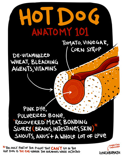 Hot Dog Anatomy | by lunchbreath