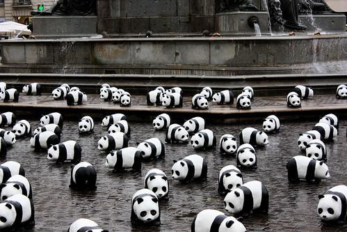 panda invasion flickr photo sharing. Black Bedroom Furniture Sets. Home Design Ideas