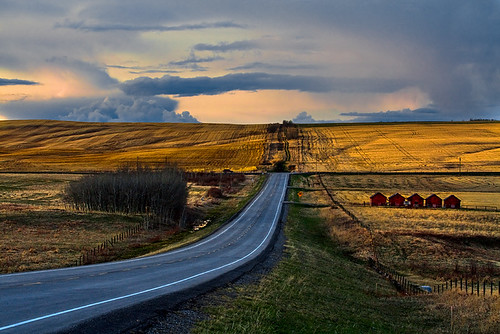 Country road, take me to the past (A.K.A. Five red barns) | by JoLoLog