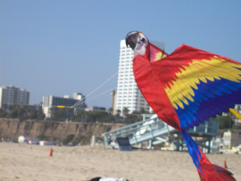 The Parrot Kite Oddharmonic Flickr