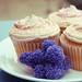 cuppycakes.