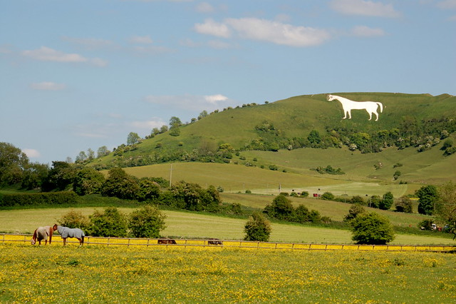 Westbury White Horse Went Visiting Cath S Brother And