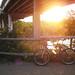 Austin's Town Lake At Sunrise