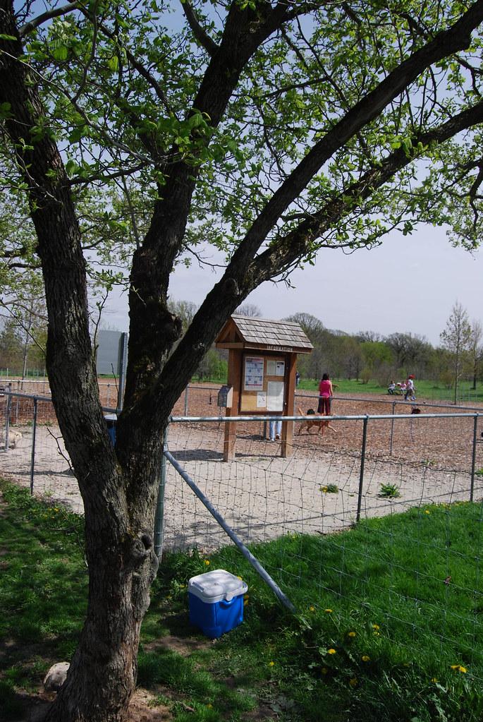 Fenced Off Leash Dog Parks Edmonton