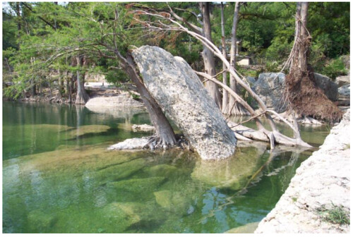 Frio River At Neals Lodges In Concan Texas Jackson
