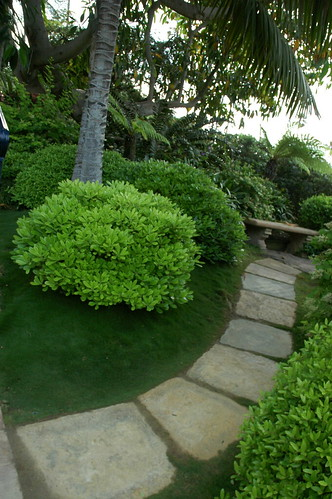The Path Flagstones Green Grass Green Trees Bright Sky Stone Bench Meditation Garden