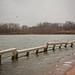 Drowning dock (7/365)