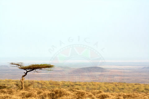 Great Landscapes, Chalbi Desert in the Background ...