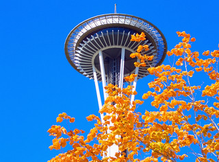 space needle | by arcalexx