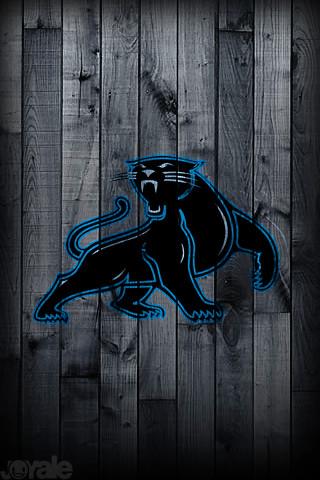 Carolina panthers i phone wallpaper a unique nfl pro - Carolina panthers iphone wallpaper ...