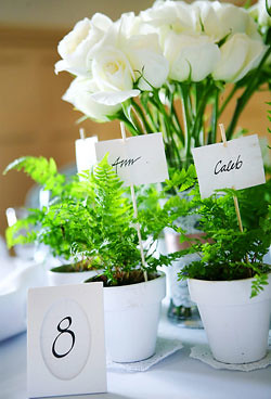 Diy Green Wedding Centerpiece Favors Let Your