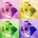 Chinese Shar Pei Dog Photography in Warhol Art