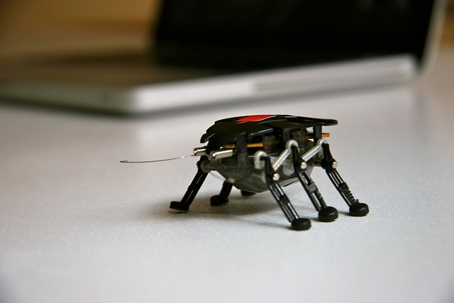 Image result for robot bug