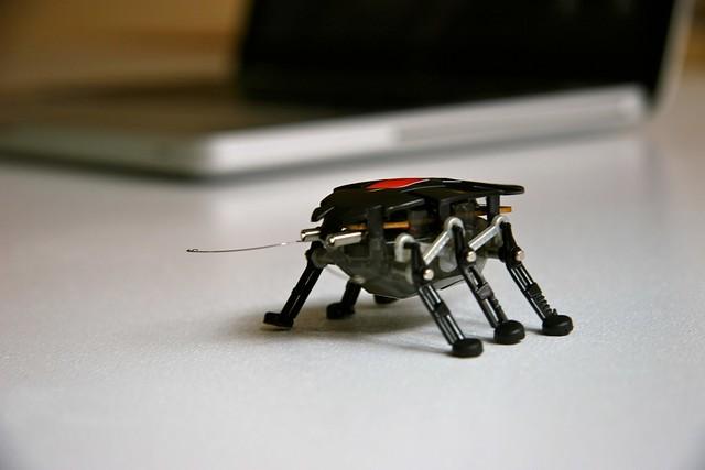Image result for robot bug