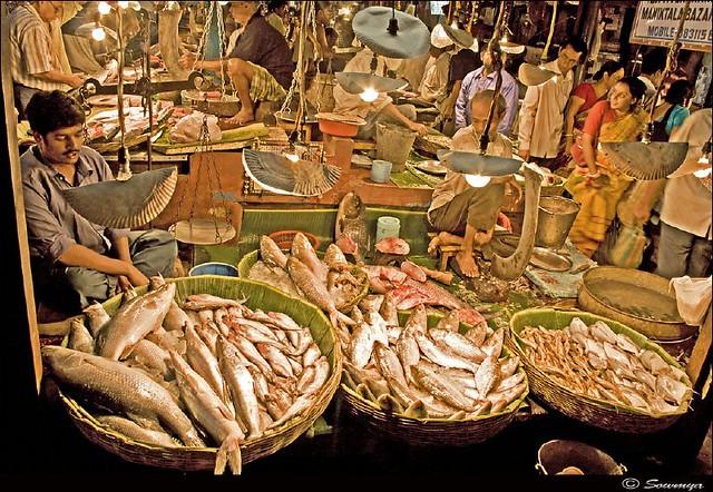 Typical Fish Market Kolkata Shot Manicktala North