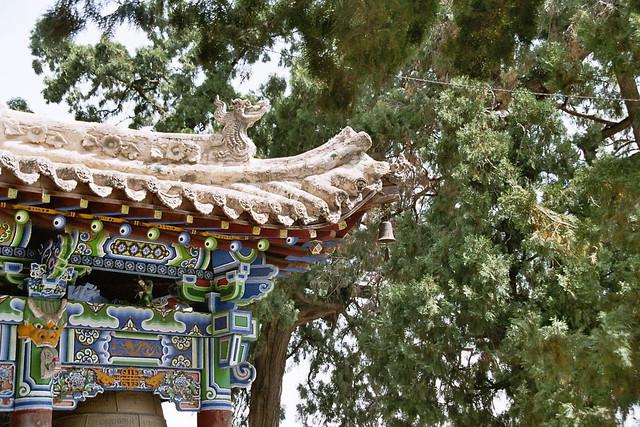 Yulin (Shaanxi) China  city photos gallery : Yulin Shaanxi China | Flickr Photo Sharing!
