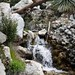 East Fork Hike Snapshot