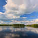 Scituate Reservoir (Mike Dooley)