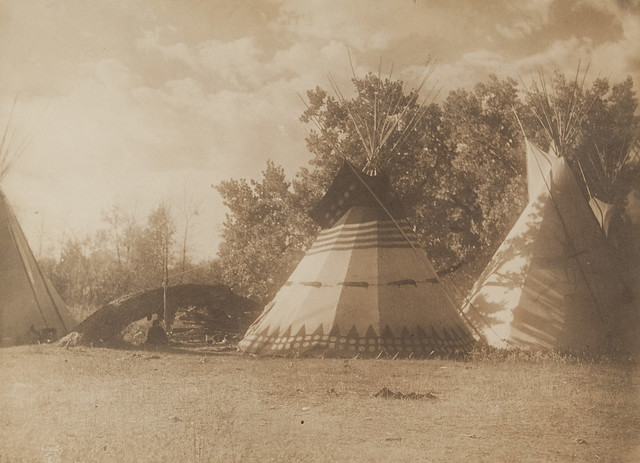 untitled  tepees with buffalo images