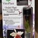 Vitro Orchid