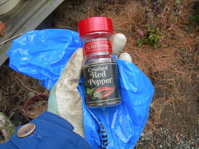How to stop cats pooping in my garden