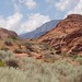 Red Cliffs Desert Reserve, Utah