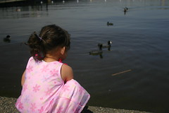 Maeby: she'll watch the duckies..