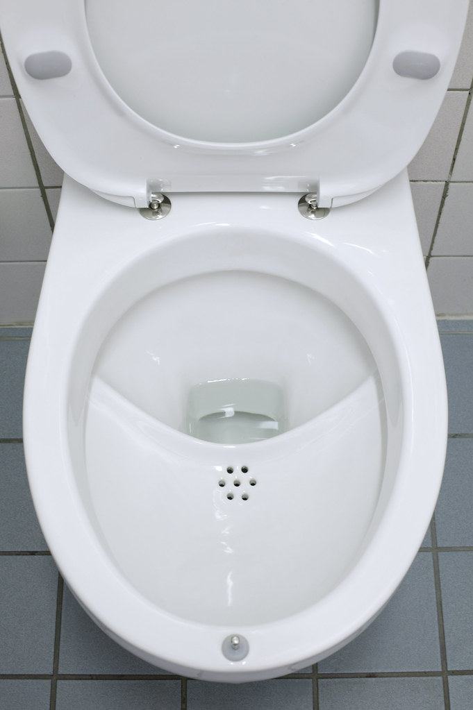 Roediger Nomix Toilet Obtained From Christian Ruester