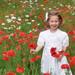 Knoxville_Garvey_Photography_Wildflower_Garden_Spring_008