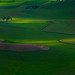 Hint Of Light On The Palouse
