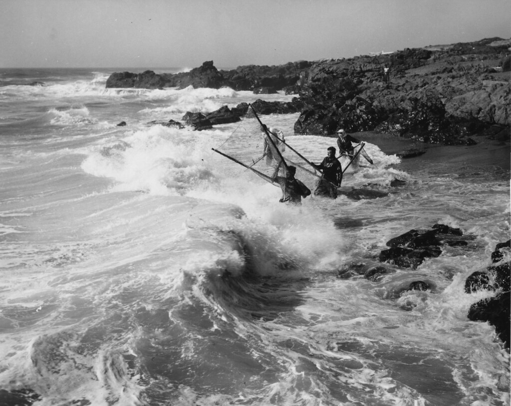Smelt fishing near yachats oregon original collection for Oregon free fishing