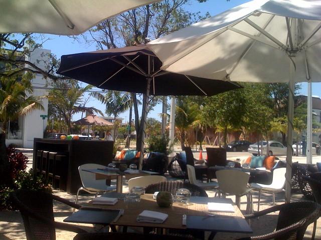 Restaurant Design Miami : Brosia restaurant miami design district ines hegedus